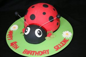 2D Lady Bird Cake